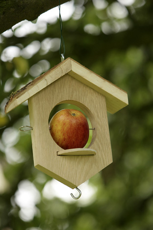 Apple-bird-feeder-large-v1