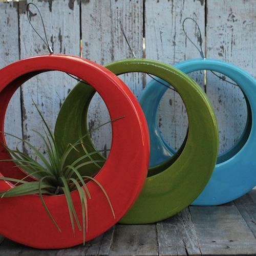 Circle_or_avacado_aqua